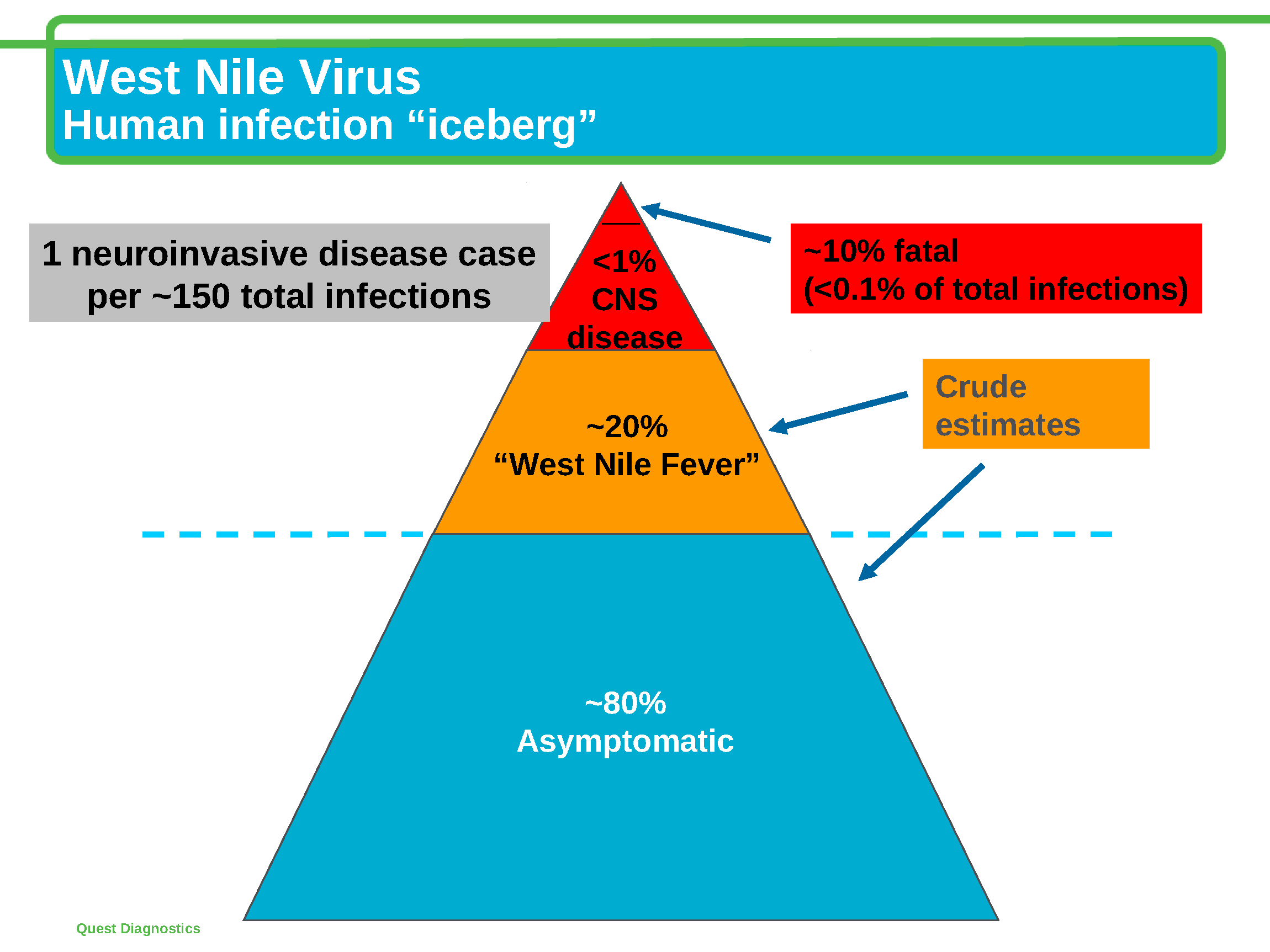 the history of the epidemic of west nile virus since 1950 Free essay: history of the west nile virus abstract west nile virus (wnv) is a virus that is transmitted by mosquitoes it has been found in humans, birds.