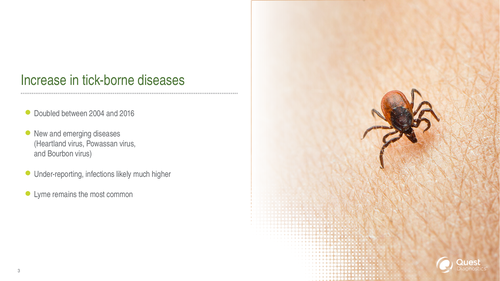 Tick-borne Illness: An expert overview of when to test